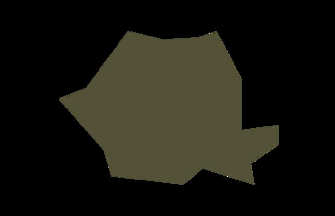 Romania maps
